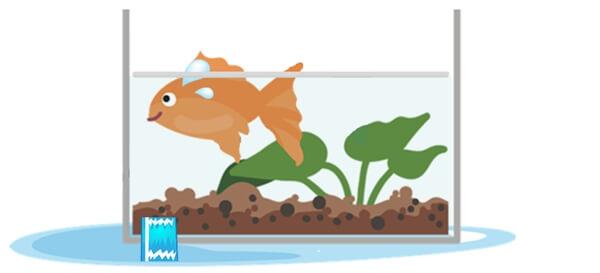 水槽に穴が開いていて水が漏れてしまう環境に住む金魚